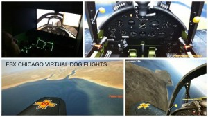 Dog Flights